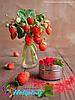 Краска Холи (Гулал) Holiplay Organic розовая