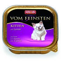 Консервы для котят Animonda Vom Feinsten Kitten, курица и ягненок,  100 грамм