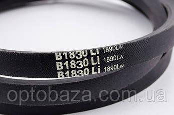 Ремінь B1830 для дизельного мотоблоку 6 к. с, фото 2