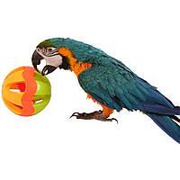 Сумасшедшая игрушки для попугая - Большой Шар, фото 1