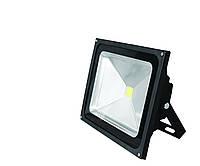 Светодиодный прожектор EUROELECTRIC LED  COB 20W 6500K classic