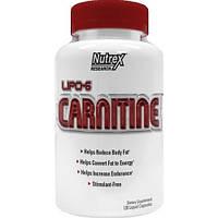 Lipo 6 Carnitine 120 liquid-caps