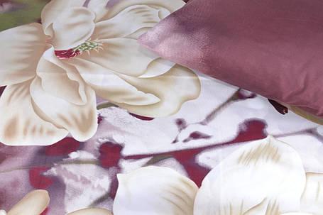 Двуспальное постельное белье (AN201/226), фото 2