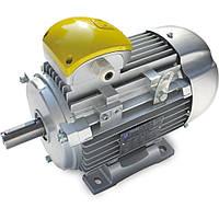 Электродвигатели переменного тока DELPHI (Motive)