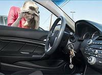 Открытие двери автомобиля , фото 1