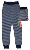 Спортивные брюки для девочек оптом, Grace, 116-146 рр., арт G60027, фото 1