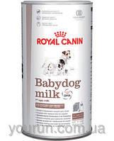 Royal Canin (Роял Канин) BabyDog Milk - заменитель молока для щенков,  400гр