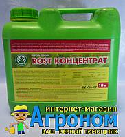 Рост концентрат калийное 10 л, Киссон, Украина