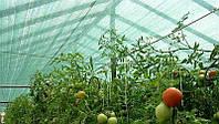 Сетка затеняющая / Сітка затіняюча зелен 60% 2м*50м, 100м.кв. (на 5-7 лет)