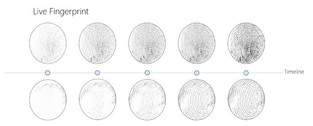 сканер пальцев
