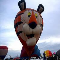 Европейский фестиваль воздушных шаров