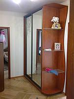 Шкаф купе,  двери зеркало с пескоструйным рисунком и стекло сатин