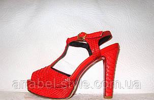 Босоножки женские стильные на невысоком каблуке красные змеиный принт, фото 2