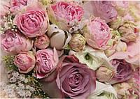 Фотообои  красивые на стену Розы размер 196 х 272 см