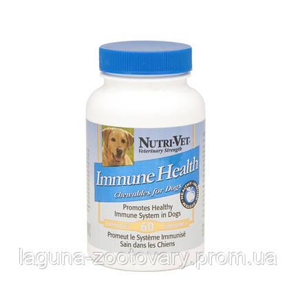 Nutri-Vet Immune Health НУТРІ-ВЕТ ЗДОРОВИЙ ІМУНІТЕТ імуностимулятор для собак, 60 табл., фото 2