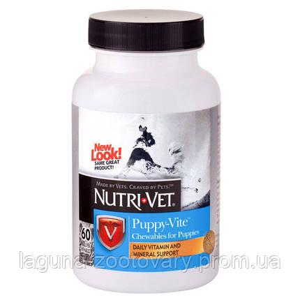 Nutri-Vet Puppy-Vite НУТРИ-ВЕТ ПАППИ-ВИТ комплекс витаминов и минералов для щенков до 9 месяцев, 60 табл., фото 2
