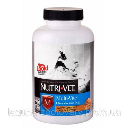 Nutri-Vet Multi-Vite НУТРИ-ВЕТ МУЛЬТИ-ВИТ комплекс витаминов и минералов для собак, жевательные таблетки, фото 2