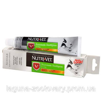 Nutri-Vet Enzymatic Toothpaste НУТРИ-ВЕТ ЭНЗИМНАЯ ЗУБНАЯ ПАСТА для собак, 70 г, фото 2