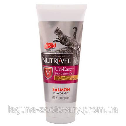 Nutri-Vet Uri-Ease НУТРИ-ВЕТ УРИ-ИЗИ витаминный комплекс для подкисления мочи котов, гель, 89 мл, фото 2
