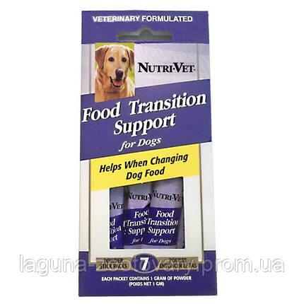 НУТРИ-ВЕТ ПОМОЩЬ ПРИ СМЕНЕ КОРМА добавка для собак с пребиотиками и полезными бактериями, порошок, стик (1 г), фото 2
