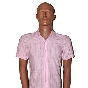 Рубашка детская ZOOR 27881