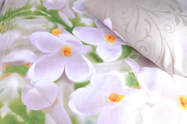 Полуторное постельное (AN151/209), фото 2