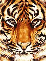 Холст по номерам без коробки Идейка Сила тигра (KHO2459) 30 х 40 см