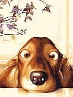 Картина раскраска по номерам без коробки Идейка Озорной щенок (KHO2443) 30 х 40 см