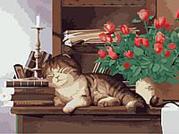 Картина раскраска по номерам без коробки Идейка Домшний любимец (KHO2441) 30 х 40 см