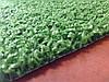 Декоративная трава Garden