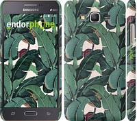 """Чехол на Samsung Galaxy J7 J700H Банановые листья """"3078c-101"""""""