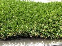 Декоративная трава Paradise