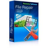 RS File Repair Коммерческая Лицензия (Recovery Software)
