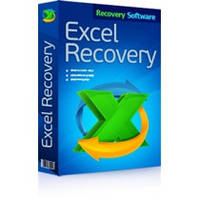 RS Excel Recovery Домашняя Лицензия (Recovery Software)