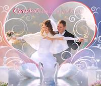 Шаблоны слайд-шоу «Свадебный альбом»