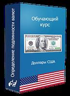 Обучающий курс «Доллары США»