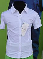 Блузка для девочки белая хлопок короткий рукав Турция