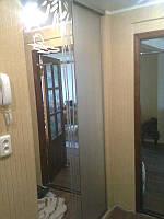 Шкаф-купе встроенный, двери - матовое зеркало и зеркало с пескоструйным рисунком