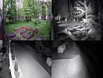 Новинка!!! Технология Starlight в камерах ROCKS!