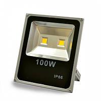 LED прожектор Profi 100W 3000K/4000K/6400К, фото 1