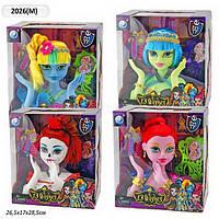 """Голова куклы """"Monster Hight"""" 2026M 4 вида, с аксессуарами, в кор.27*17*29см"""