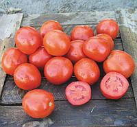 Семена томата Вулкан F1 25000 семян Nunhems