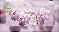Схема для вышивки бисером на холсте на подрамнике орхидеи
