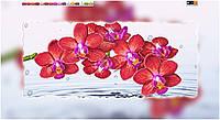 Схема для вышивки бисером на холсте на подрамнике Орхидея