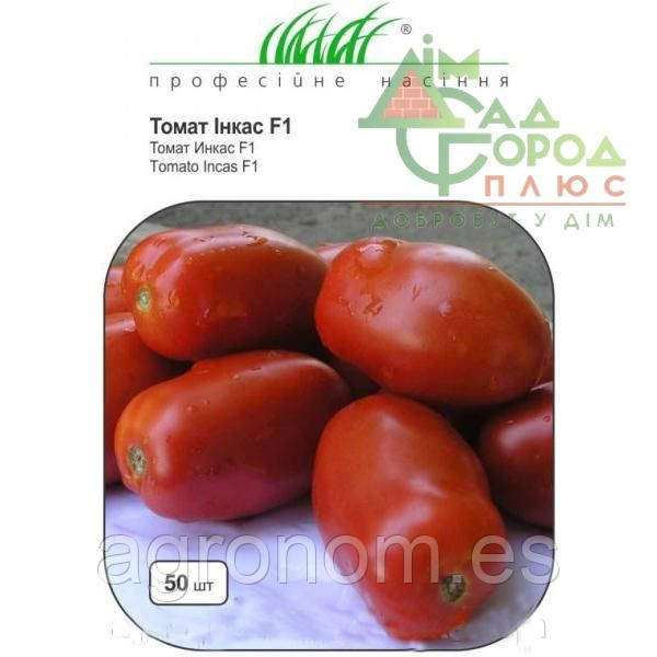 Семена томата Инкас F1 25000 семян Nunhems