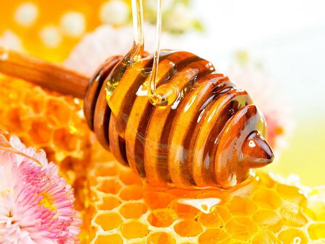 Стандарти якості меду після лікування бджіл. Вимоги до меду з боку ЄС.