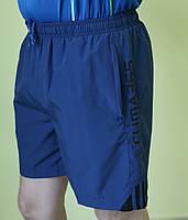 Мужские шорты Adidas (258735-7) синие код 01-11