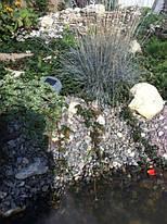 БИО-ПЛАТО – гарантия чистой воды