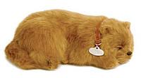 Дышащая игрушка мягкая Perfect Petzzz Шпиц