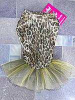 Одежда для собак, тигровое платье